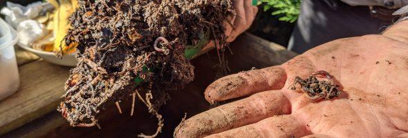 Retour en images sur le Café Compost