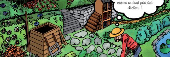 Des trésors verts dans votre jardin